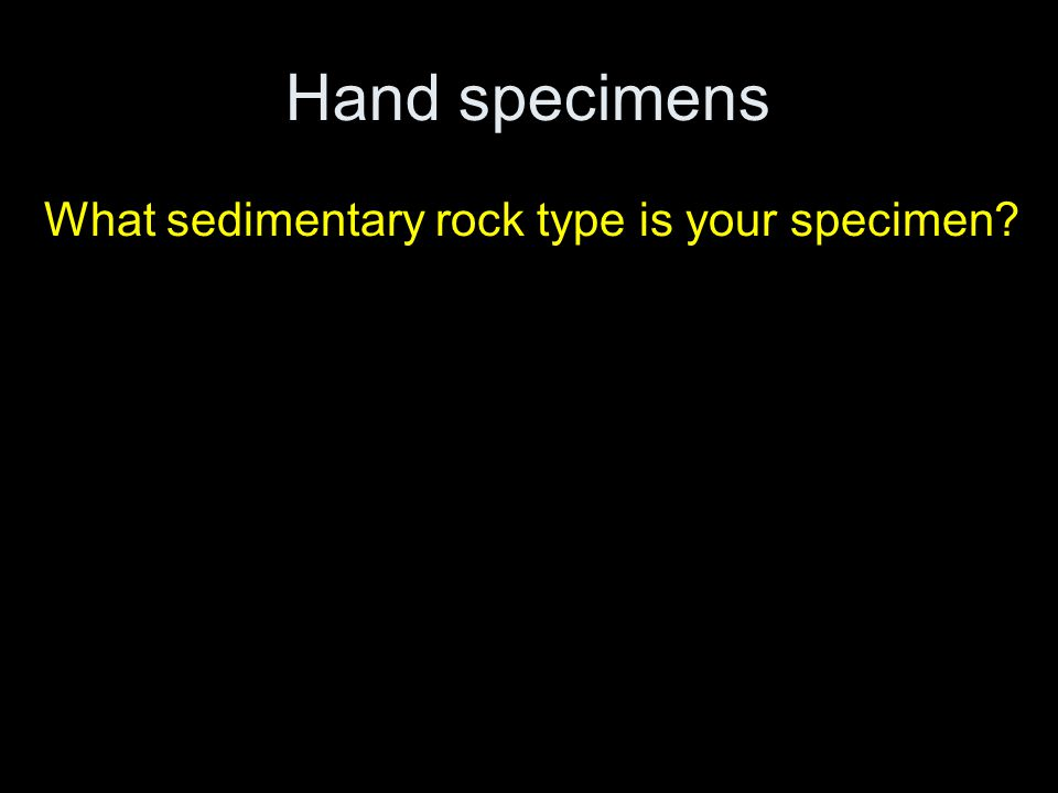 Hand specimens What sedimentary rock type is your specimen