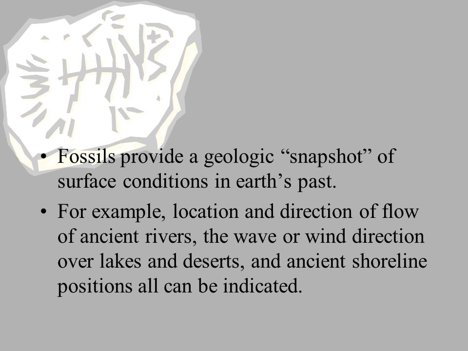 Fossils provide a geologic snapshot of surface conditions in earth's past.