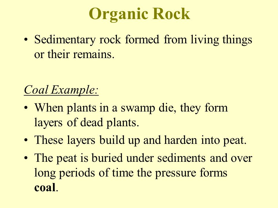 Organic Rock Sedimentary rock formed from living things or their remains.