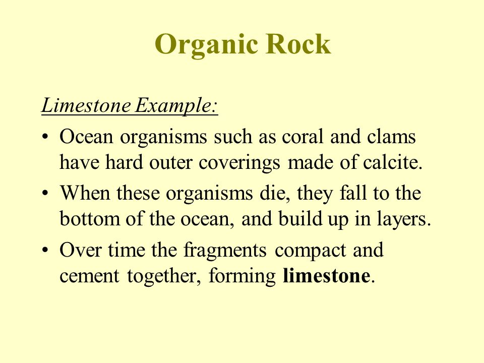 Organic Rock Limestone Example: Ocean organisms such as coral and clams have hard outer coverings made of calcite.