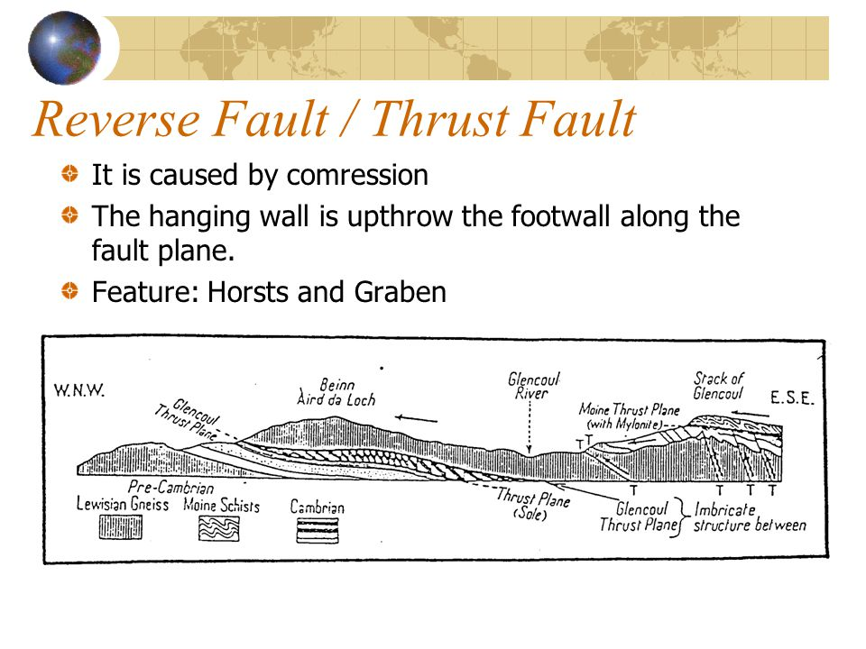 Reverse Fault / Thrust Fault It is caused by comression The hanging wall is upthrow the footwall along the fault plane. Feature: Horsts and Graben