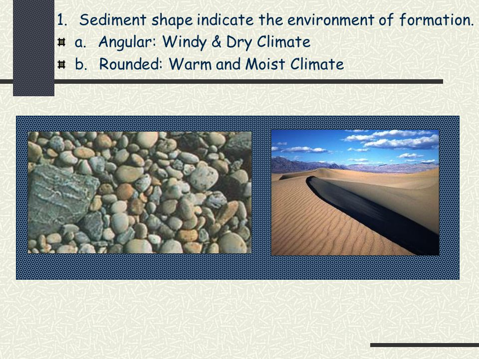 Sedimentary Rocks A. Form from Sediments Which are pieces of solid material that have been weathered & deposited on the earth's surface by wind, water