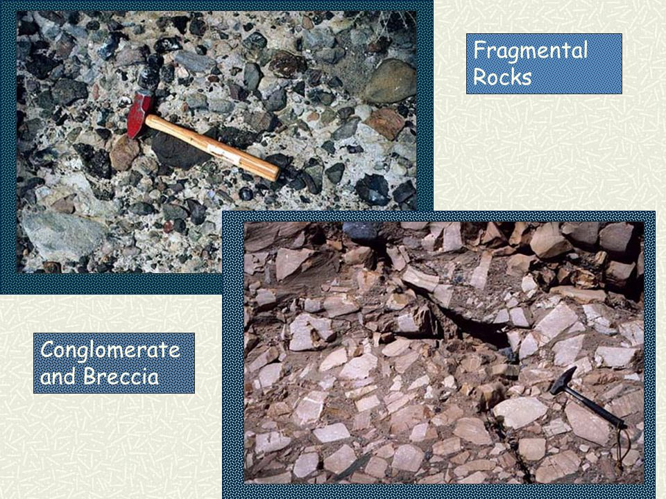  Limestone: Skeletal remains of marine animals  Chalk: Microscopic skeletal remains  Coal: forms from decaying plants 1.