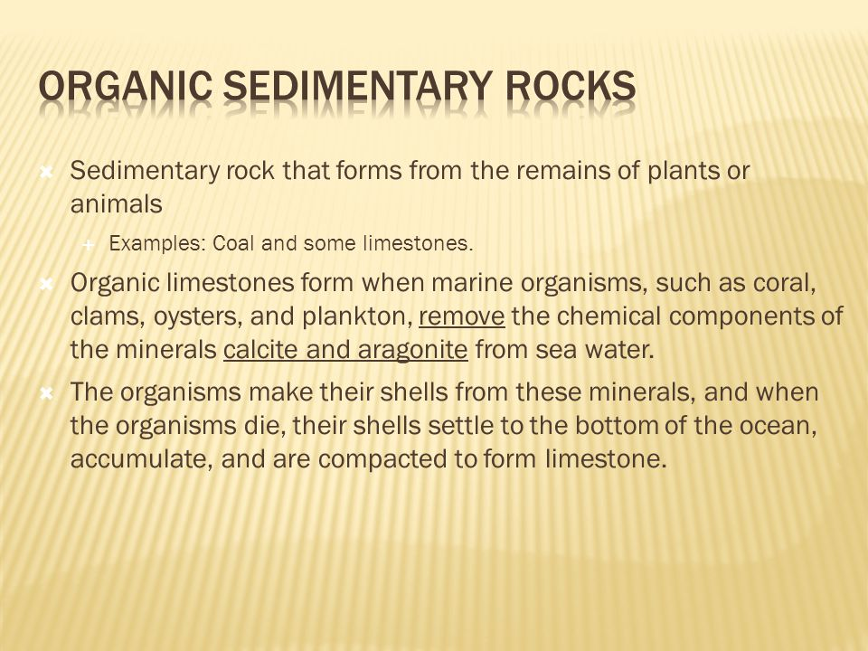  Sedimentary rock that forms from the remains of plants or animals  Examples: Coal and some limestones.