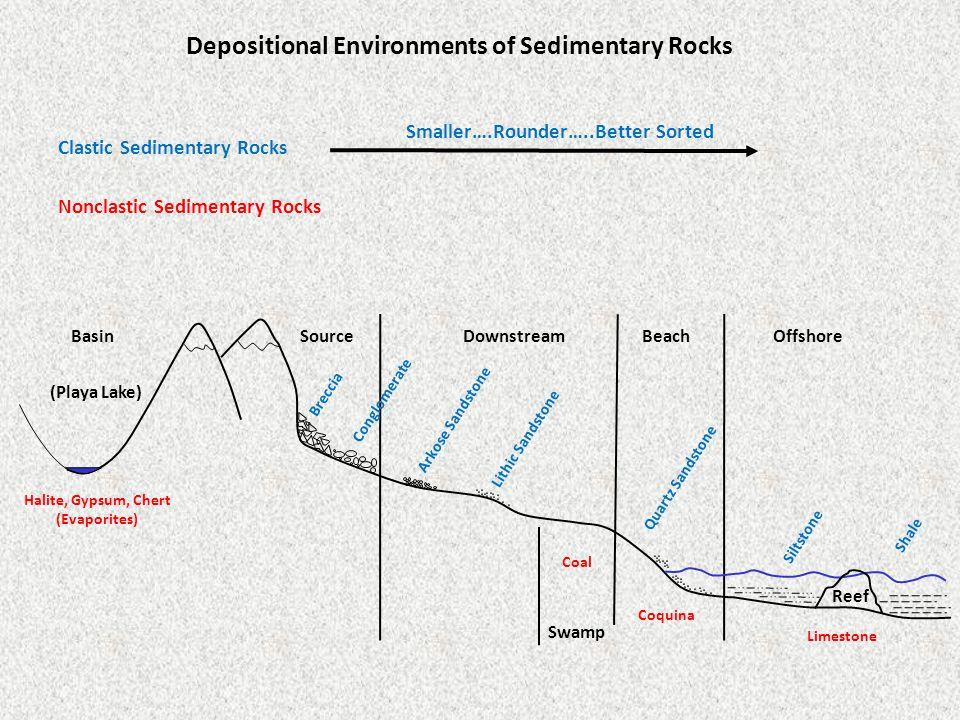 SourceDownstreamBeachOffshoreBasin Breccia Conglomerate Arkose Sandstone Swamp Lithic Sandstone Quartz Sandstone Reef Siltstone Shale Halite, Gypsum, Chert (Evaporites) (Playa Lake) Coal Limestone Clastic Sedimentary Rocks Smaller….Rounder…..Better Sorted Nonclastic Sedimentary Rocks Coquina Depositional Environments of Sedimentary Rocks