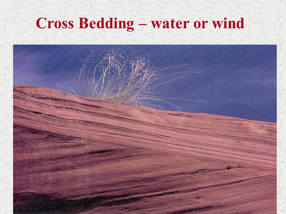 Cross Bedding – water or wind