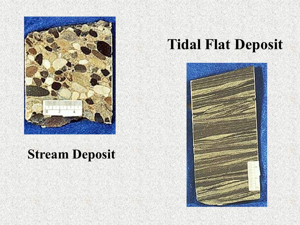 Stream Deposit Tidal Flat Deposit