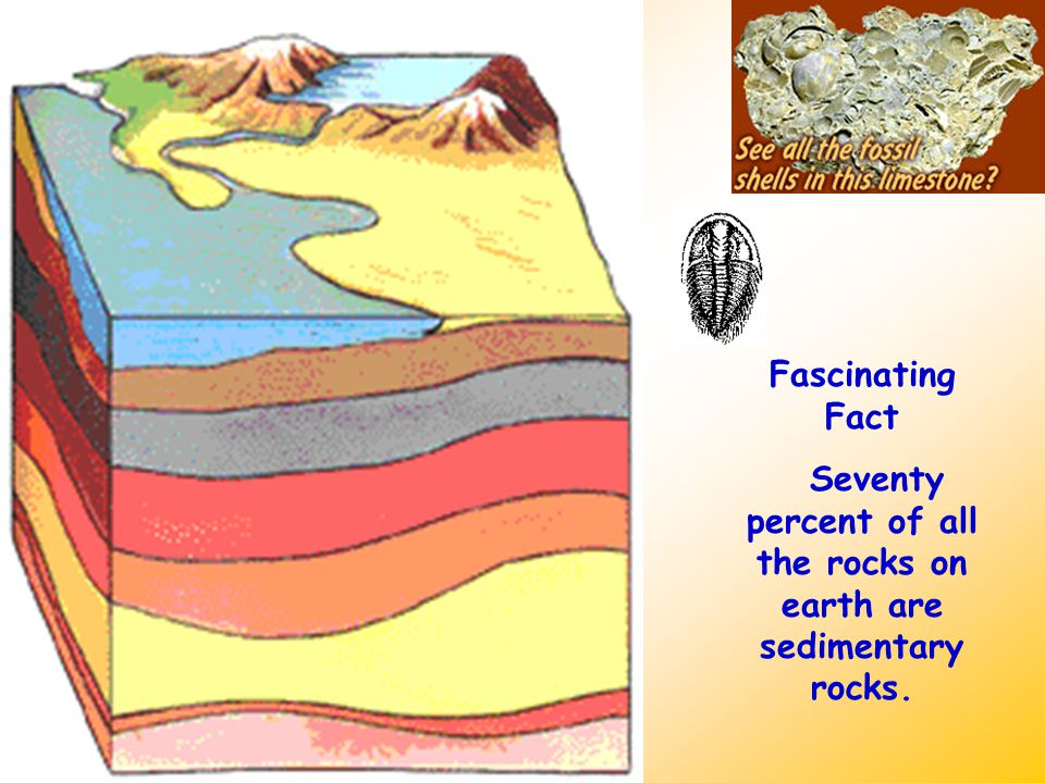 Fascinating Fact Seventy percent of all the rocks on earth are sedimentary rocks.