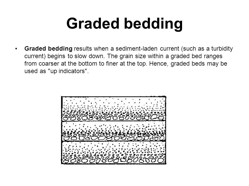 Graded bedding Graded bedding results when a sediment-laden current (such as a turbidity current) begins to slow down.