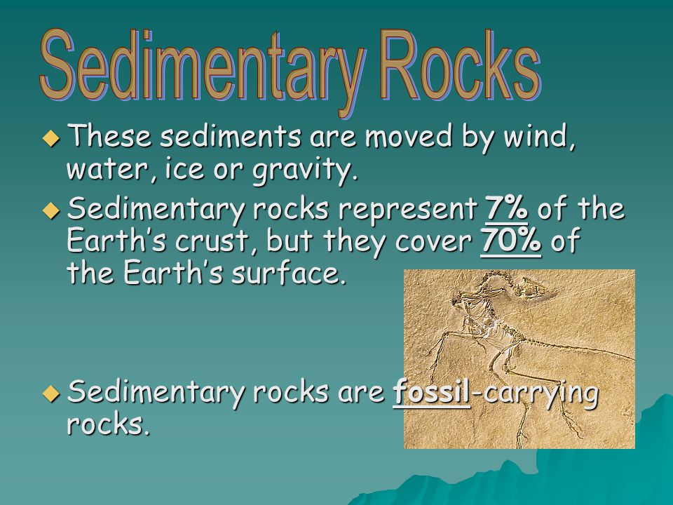  These sediments are moved by wind, water, ice or gravity.  Sedimentary rocks represent 7% of the Earth's crust, but they cover 70% of the Earth's s