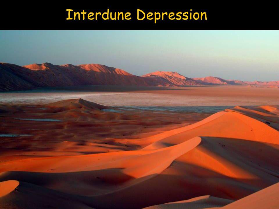 Interdune Depression