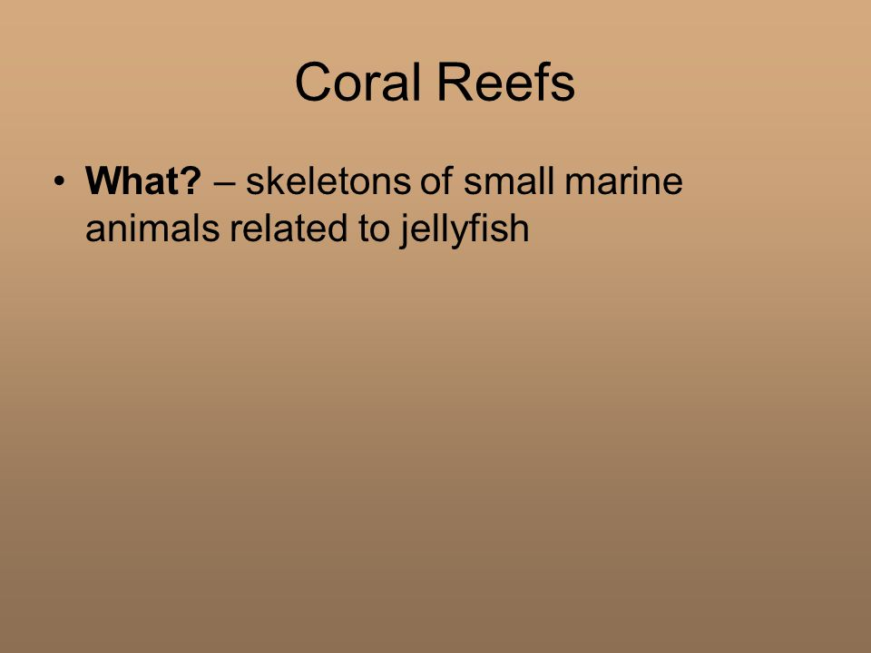 Coral Reefs What? – skeletons of small marine animals related to jellyfish