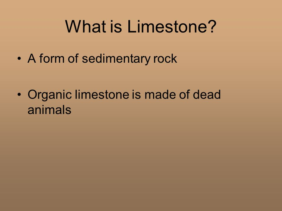 What is Limestone A form of sedimentary rock Organic limestone is made of dead animals