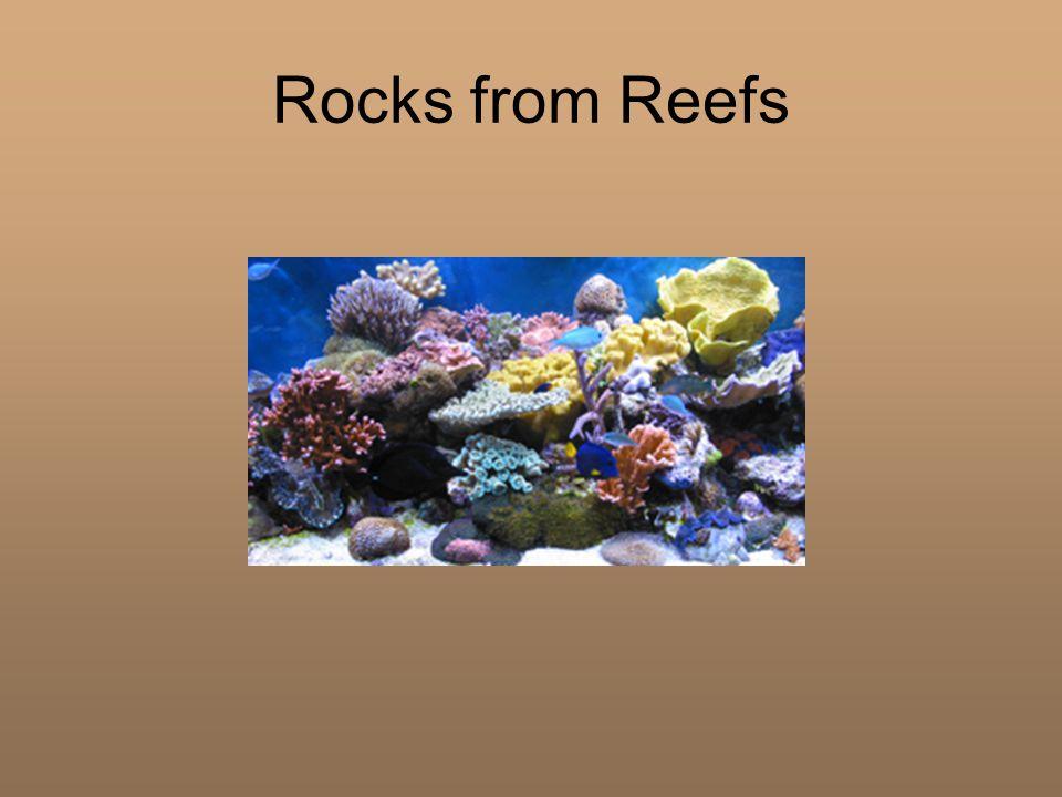 Rocks from Reefs
