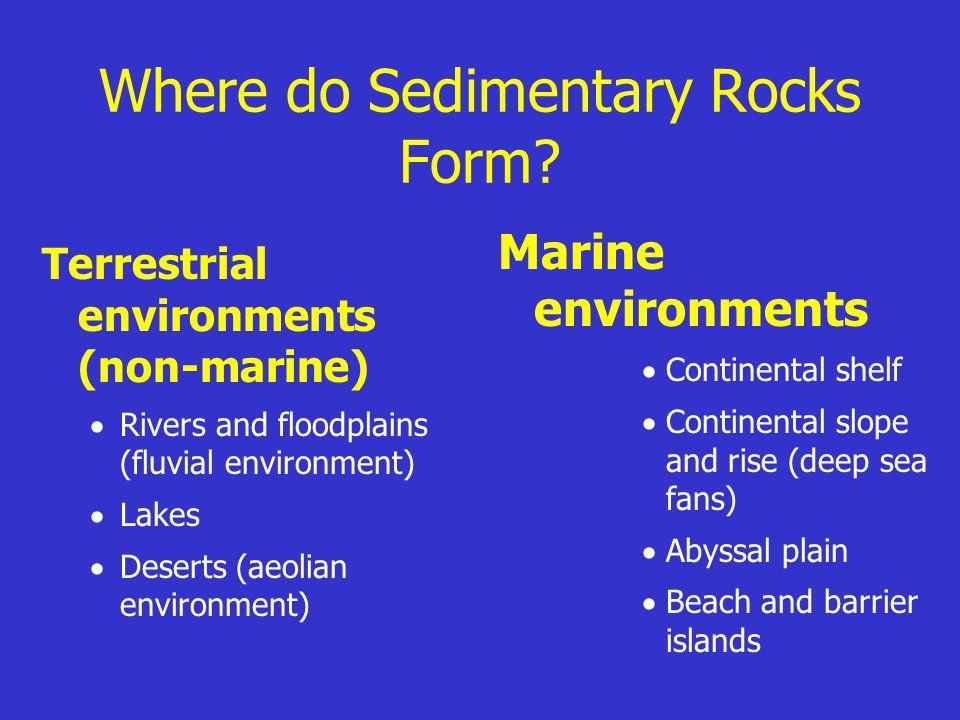 Where do Sedimentary Rocks Form? Terrestrial environments (non-marine)  Rivers and floodplains (fluvial environment)  Lakes  Deserts (aeolian envir