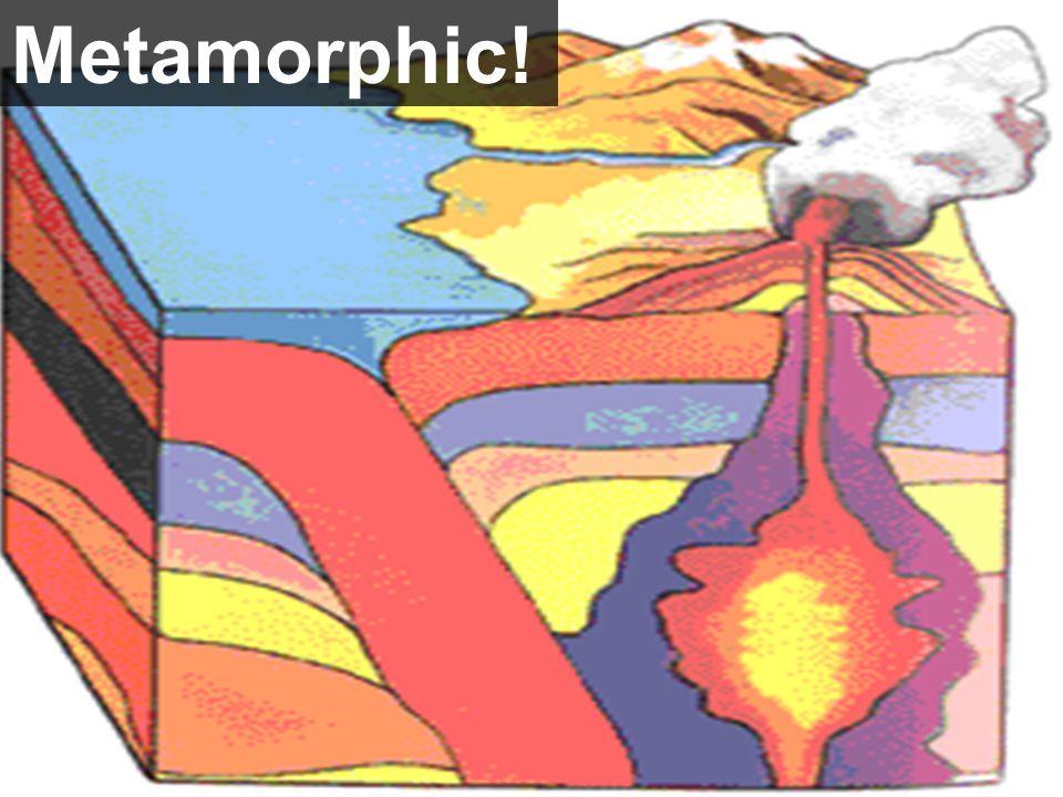 Metamorphic!