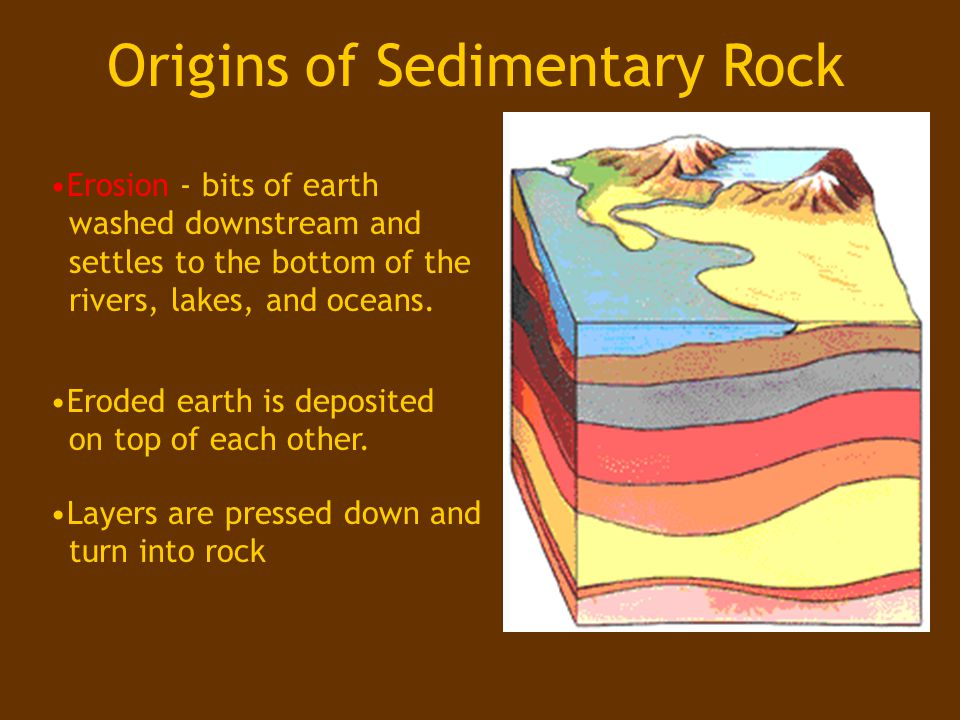 Sedimentary Rock Rock that forms when sediments are compacted and cemented together