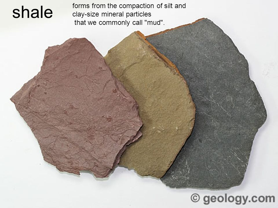 shale forms from the compaction of silt and clay-size mineral particles that we commonly call