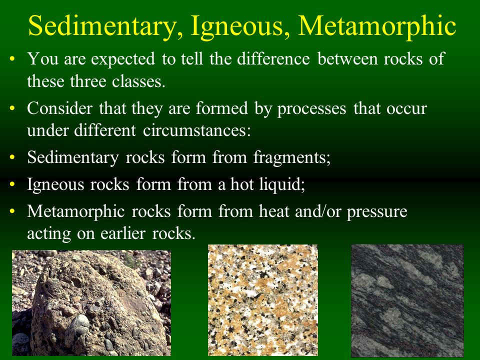 Sedimentary Rocks Because these form near or on surface, living and dead things leave traces of themselves in sedimentary rocks.