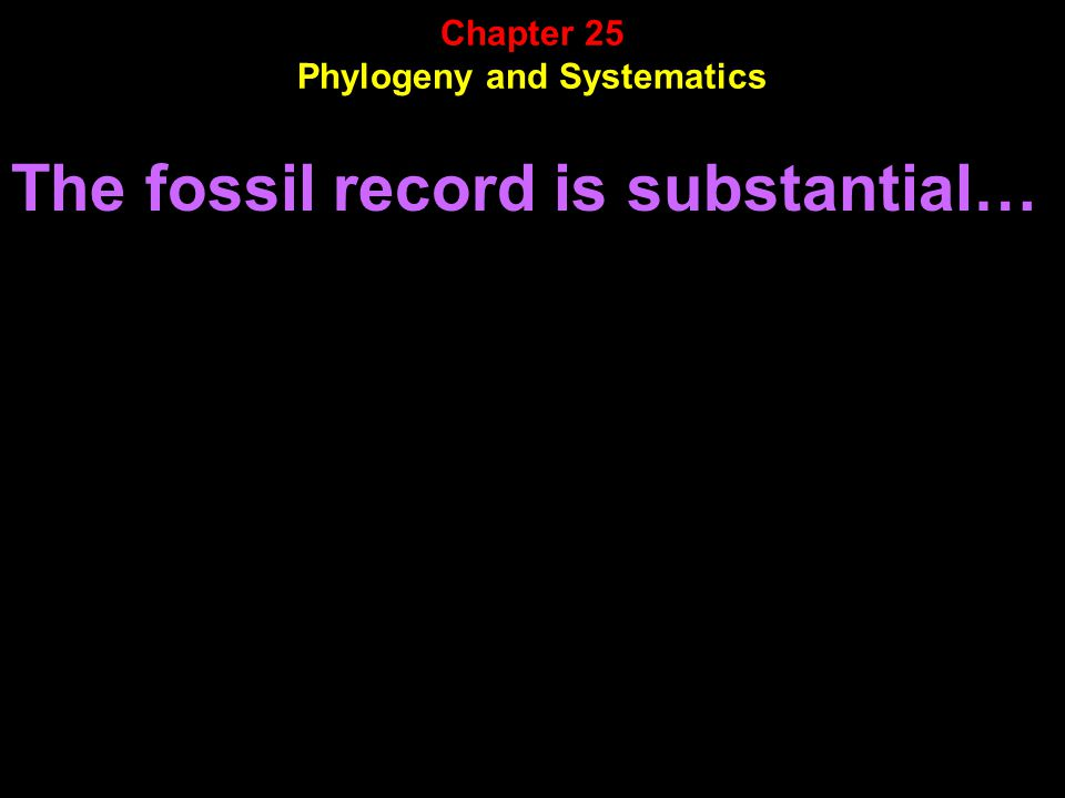 The fossil record is substantial… Chapter 25 Phylogeny and Systematics