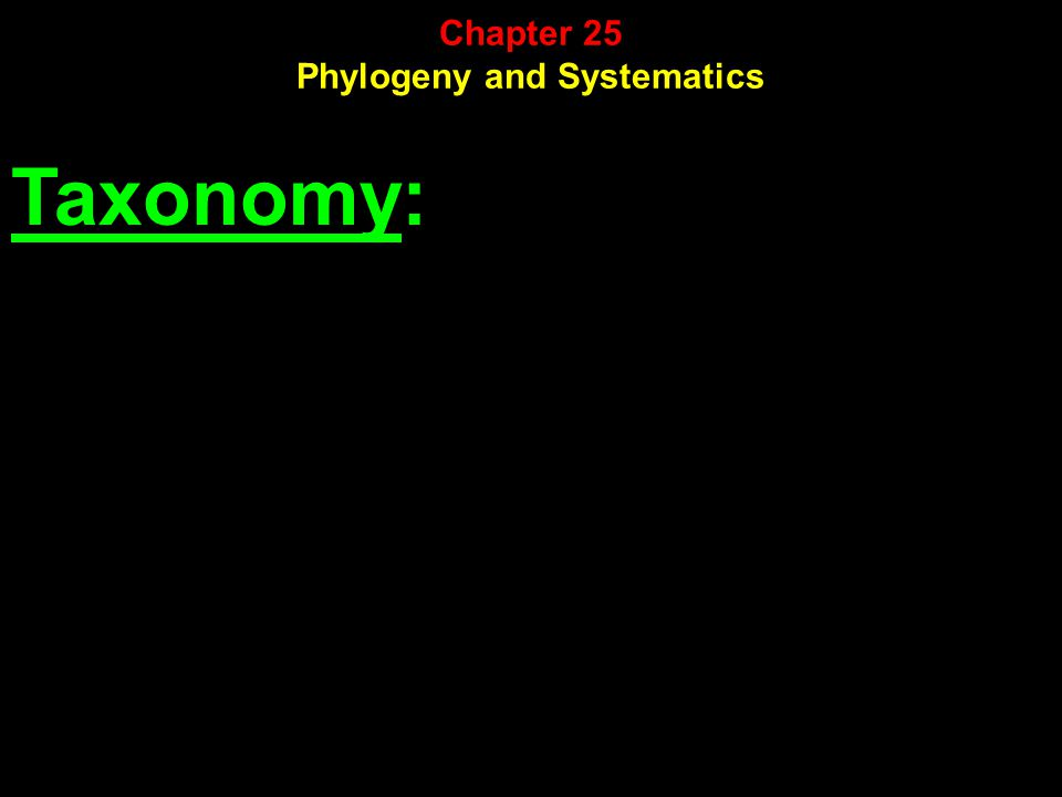 Taxonomy: Chapter 25 Phylogeny and Systematics