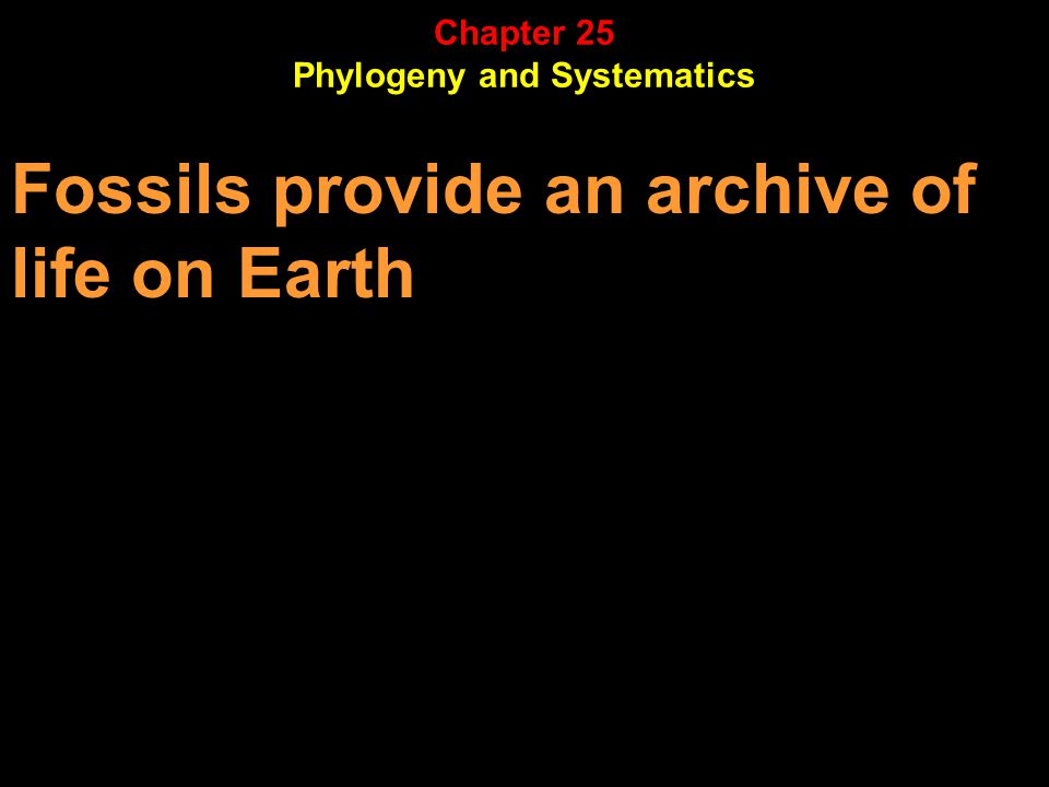 Fossils provide an archive of life on Earth Chapter 25 Phylogeny and Systematics