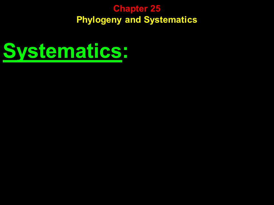 Systematics: Chapter 25 Phylogeny and Systematics