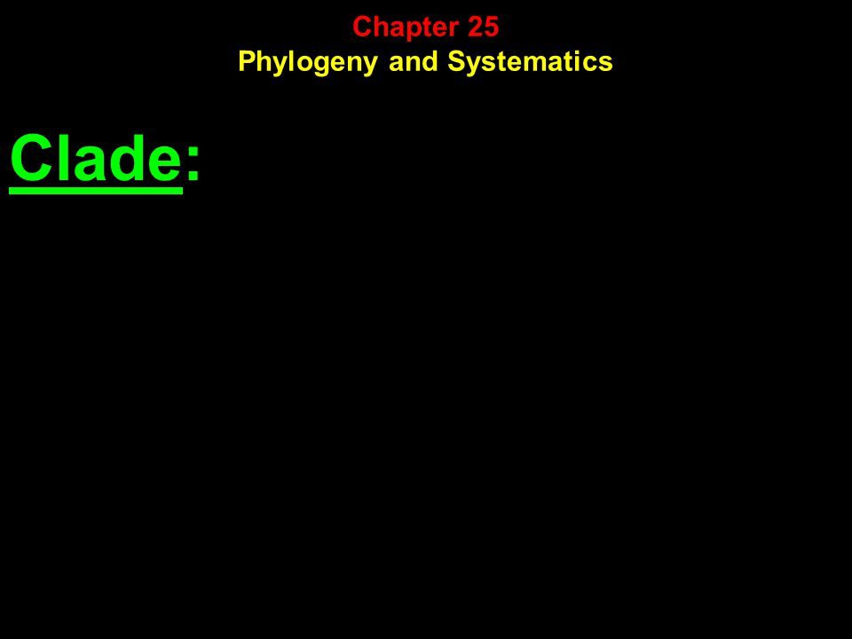 Clade: Chapter 25 Phylogeny and Systematics