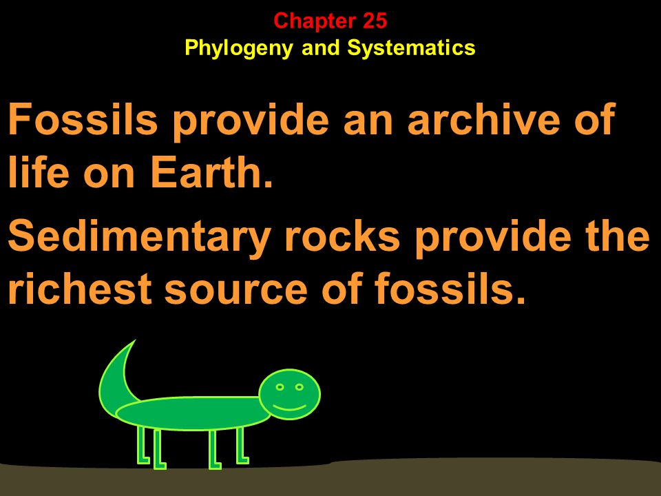 Sedimentary strata reveal the relative ages of fossils. Chapter 25 Phylogeny and Systematics