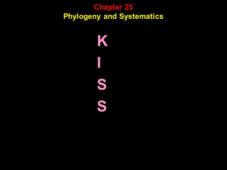 KISSKISS