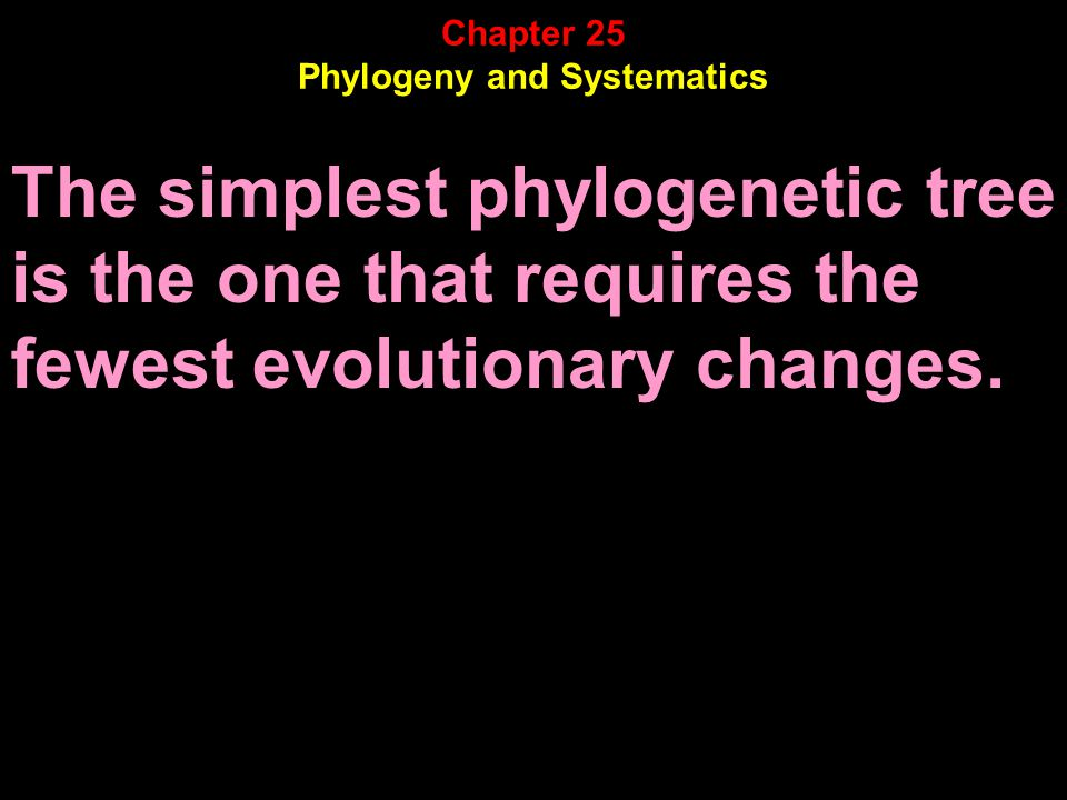 The simplest phylogenetic tree is the one that requires the fewest evolutionary changes.
