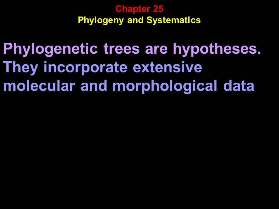 Phylogenetic trees are hypotheses.