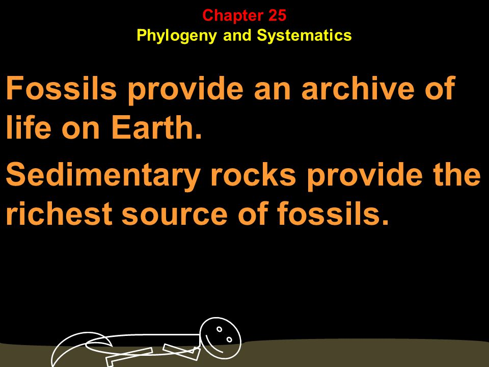 Geologic eras and periods correspond to major transitions in fossil species.