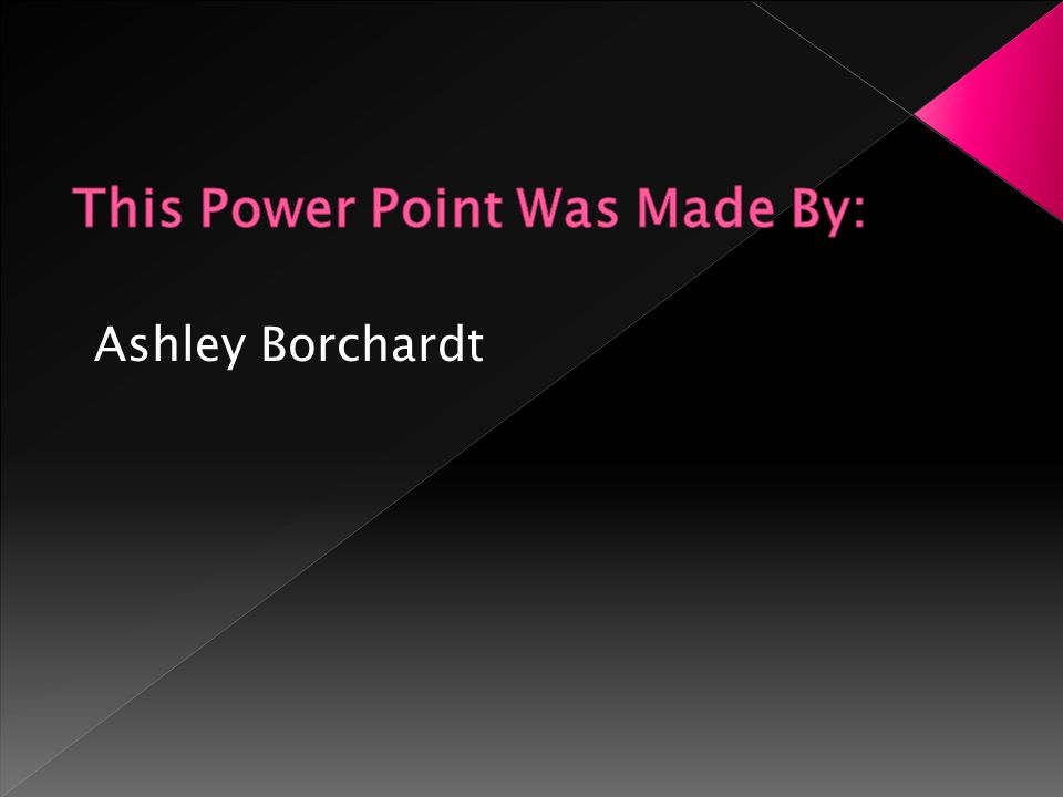 Ashley Borchardt