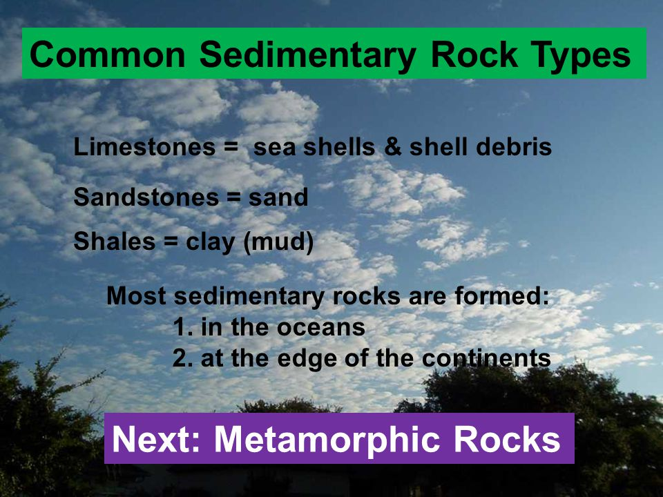 Common Sedimentary Rock Types Limestones = sea shells & shell debris Sandstones = sand Shales = clay (mud) Next: Metamorphic Rocks Most sedimentary ro