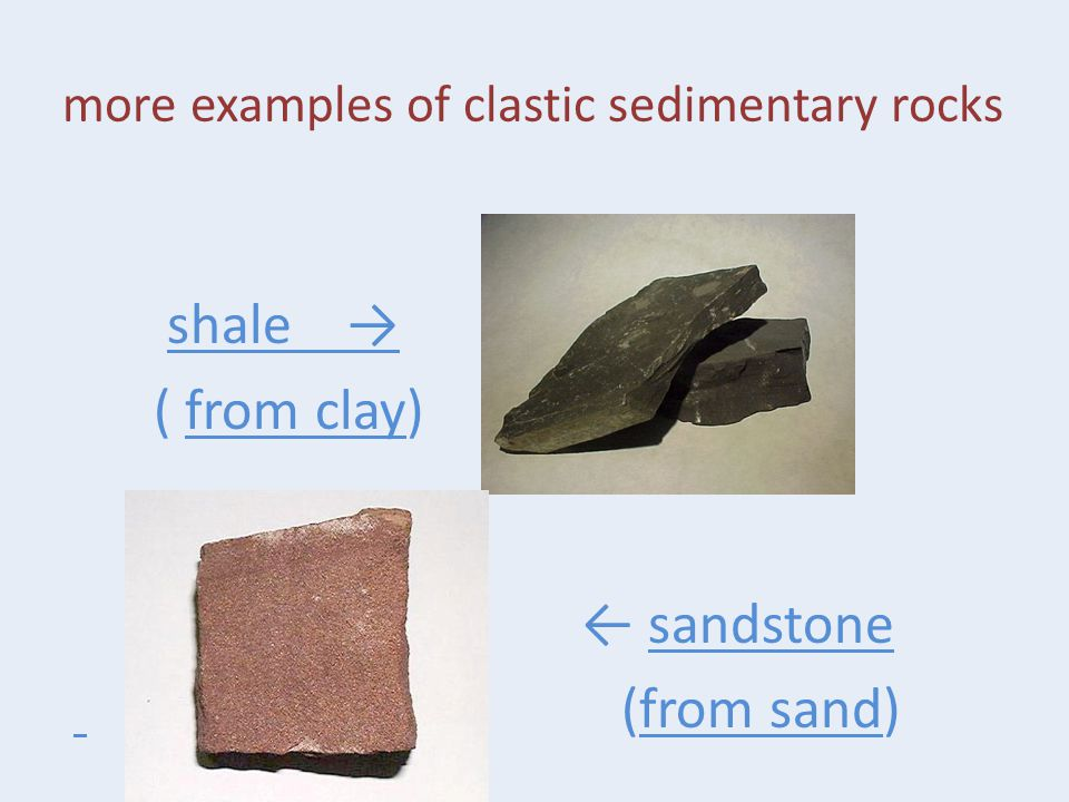 more examples of clastic sedimentary rocks shale → ( from clay) ← sandstone (from sand)