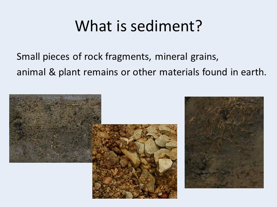 What is sediment? Small pieces of rock fragments, mineral grains, animal & plant remains or other materials found in earth.
