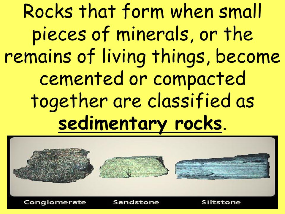 4 Rocks that form when small pieces of minerals, or the remains of living things, become cemented or compacted together are classified as sedimentary rocks.