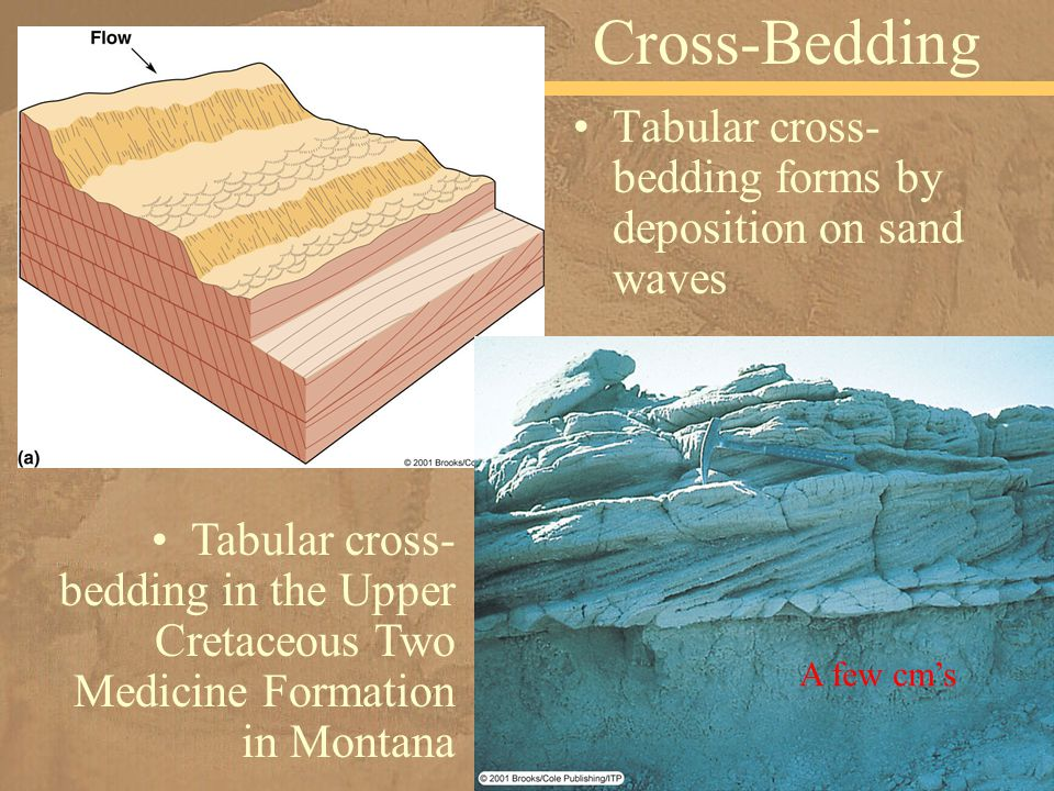 Tabular cross- bedding forms by deposition on sand waves Cross-Bedding Tabular cross- bedding in the Upper Cretaceous Two Medicine Formation in Montan
