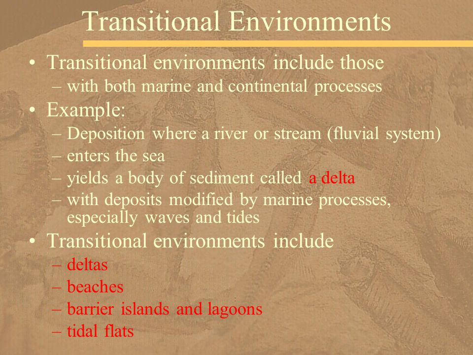 Transitional environments include those –with both marine and continental processes Example: –Deposition where a river or stream (fluvial system) –ent