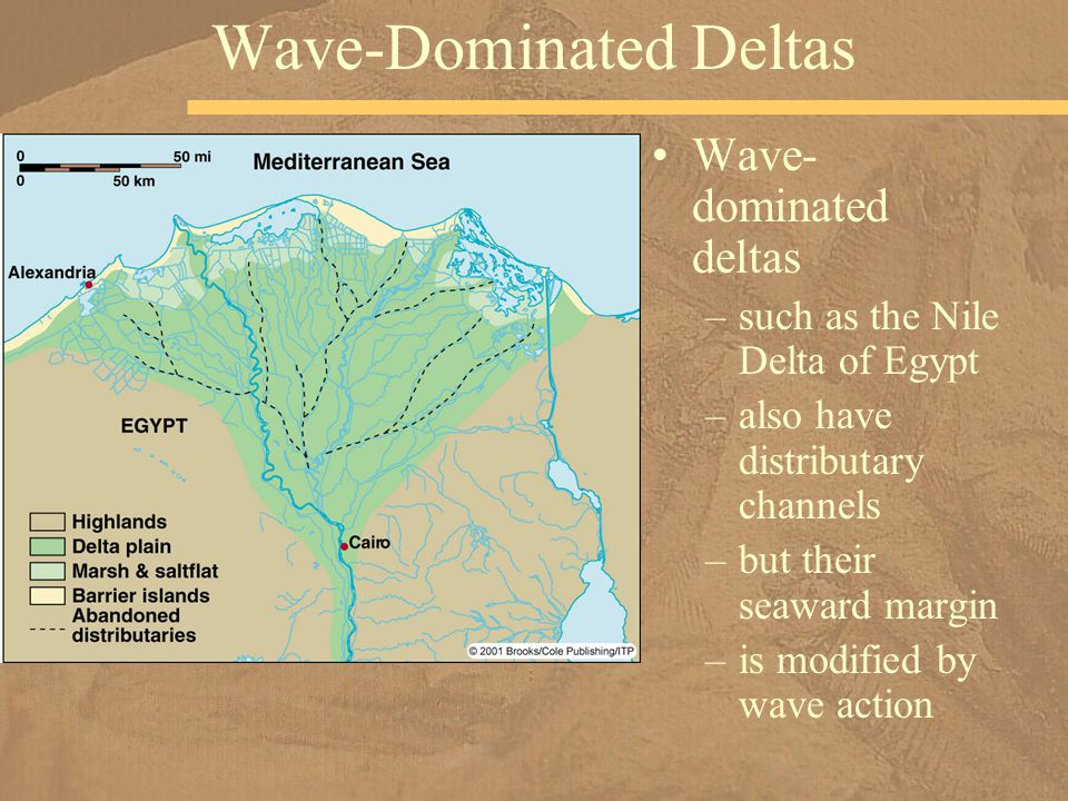 Wave- dominated deltas –such as the Nile Delta of Egypt –also have distributary channels –but their seaward margin –is modified by wave action Wave-Do