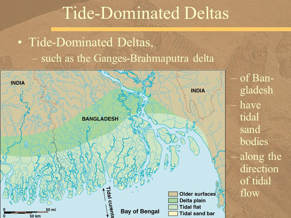 Tide-Dominated Deltas, –such as the Ganges-Brahmaputra delta Tide-Dominated Deltas –of Ban- gladesh –have tidal sand bodies –along the direction of ti