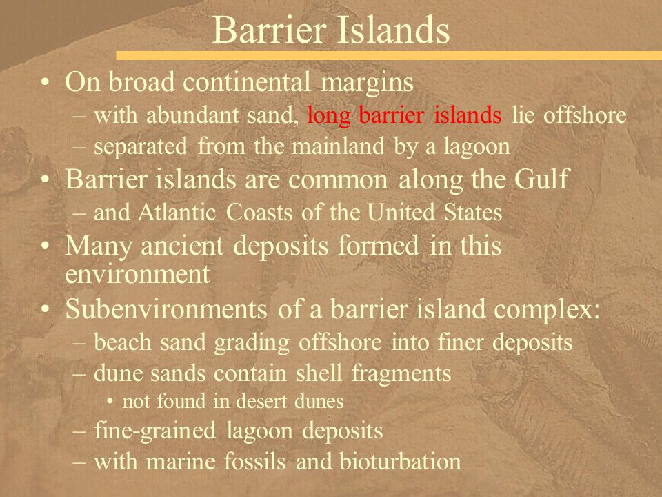 On broad continental margins –with abundant sand, long barrier islands lie offshore –separated from the mainland by a lagoon Barrier islands are commo