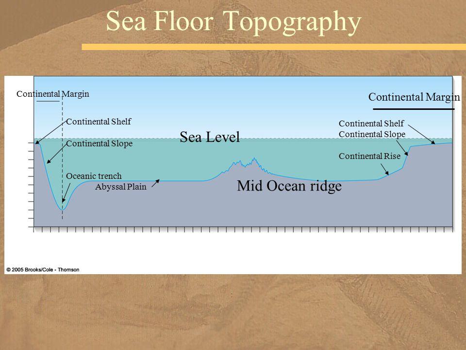 Sea Floor Topography Sea Level Mid Ocean ridge Continental Margin Continental Shelf Continental Slope Oceanic trench Abyssal Plain Continental Margin