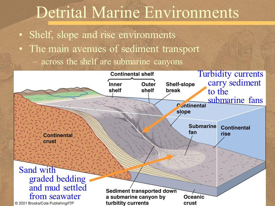 Shelf, slope and rise environments The main avenues of sediment transport –across the shelf are submarine canyons Detrital Marine Environments Turbidi