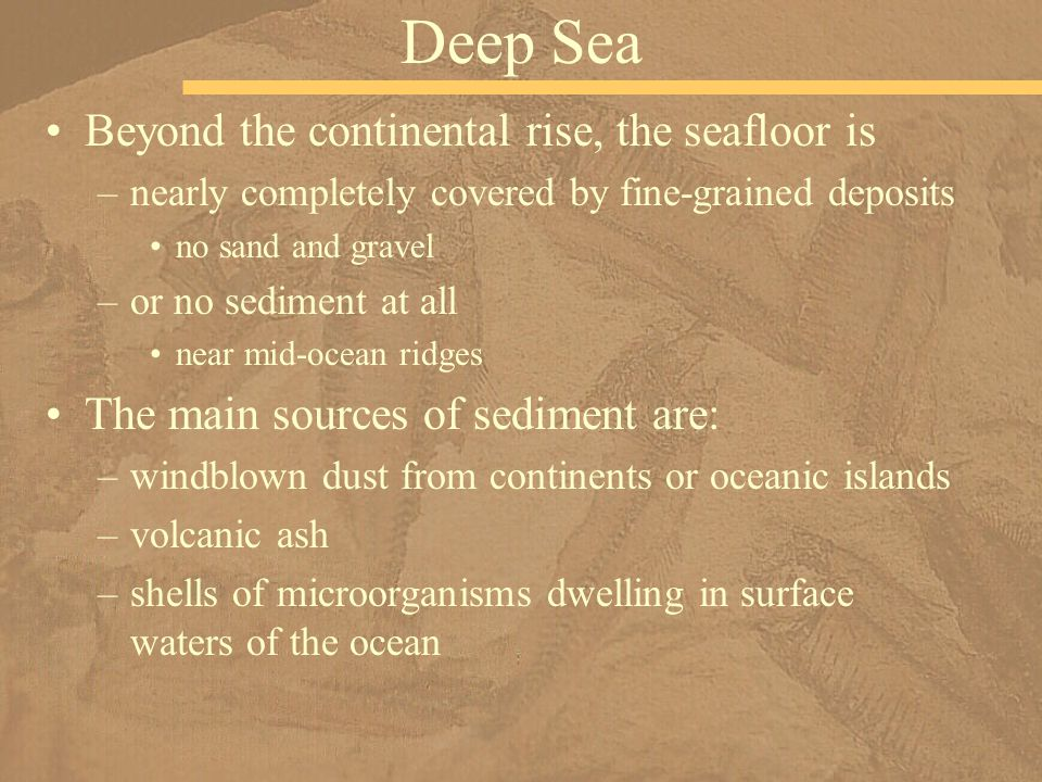 Beyond the continental rise, the seafloor is –nearly completely covered by fine-grained deposits no sand and gravel –or no sediment at all near mid-oc