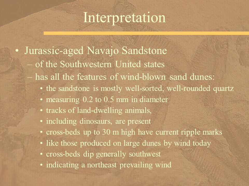 Jurassic-aged Navajo Sandstone –of the Southwestern United states –has all the features of wind-blown sand dunes: the sandstone is mostly well-sorted,