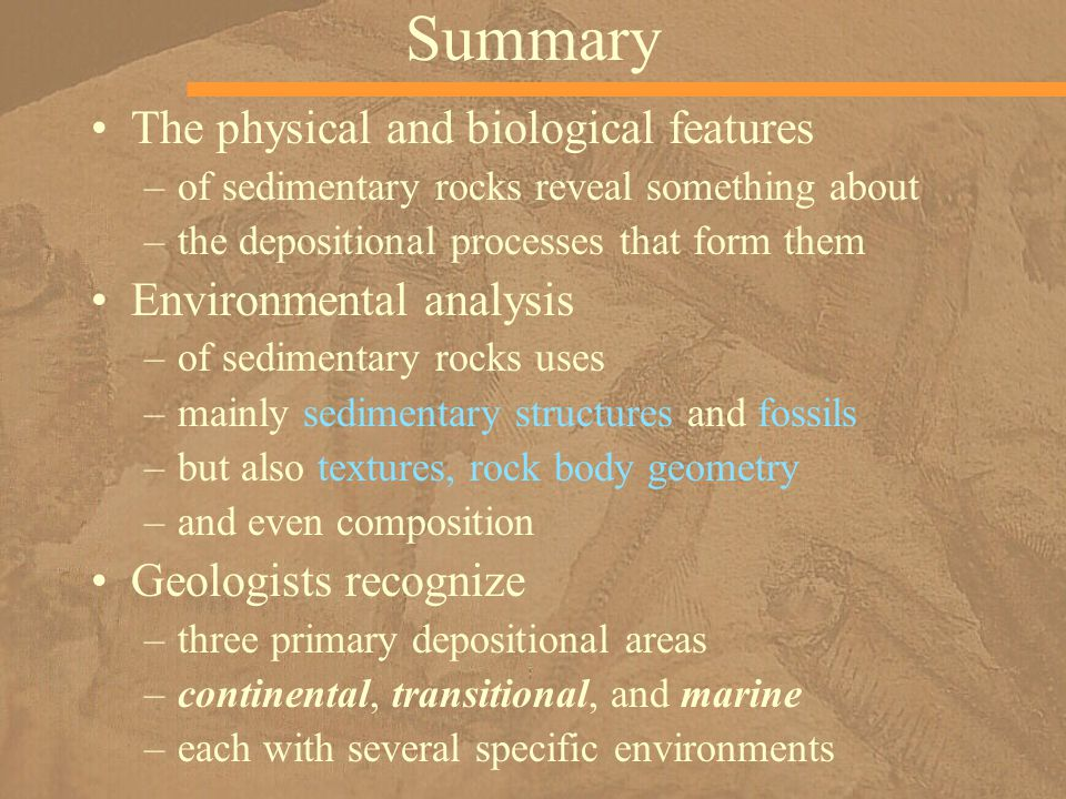 Summary The physical and biological features –of sedimentary rocks reveal something about –the depositional processes that form them Environmental ana