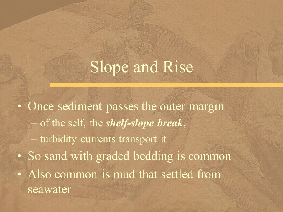 Once sediment passes the outer margin –of the self, the shelf-slope break, –turbidity currents transport it So sand with graded bedding is common Also