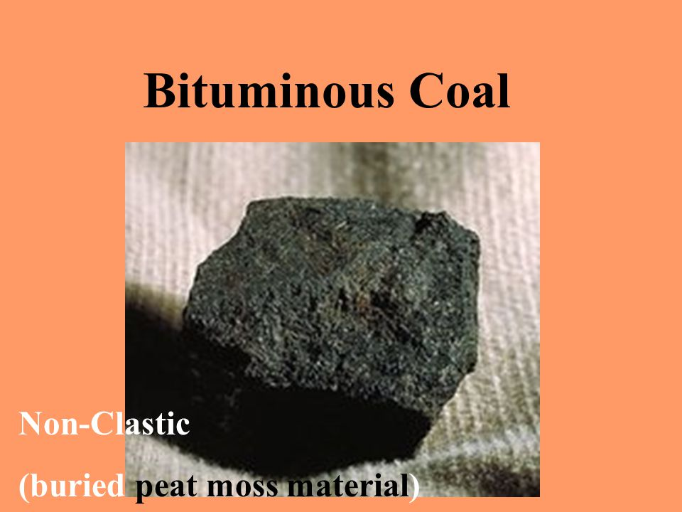 Peat that gets buried over time and compressed deep into the earth eventually gives us bituminous coal.